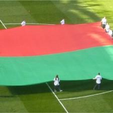Mayo flag AIF 2013